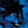 Аватар пользователя rbBigDog