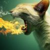 Аватар пользователя Action102090