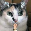Аватар пользователя sharkfuuuu