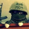 Аватар пользователя Blindkot