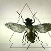 Аватар пользователя Bucephalus