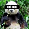 Аватар пользователя lnsomnia