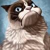 Аватар пользователя 4yIIaka6pa
