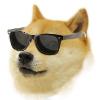 Аватар пользователя niga100