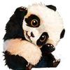 Аватар пользователя Pirozhenko