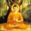 Аватар пользователя Buddist