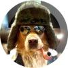 Аватар пользователя godids