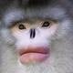 Аватар пользователя xeh92
