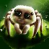 Аватар пользователя pauk999999999
