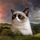 Аватар пользователя Uzvern