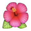 Аватар пользователя lilimon24