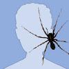 Аватар пользователя rioakaanhell