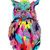 Аватар пользователя OchoCho