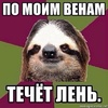 Аватар пользователя TheBazilius
