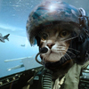 Аватар пользователя FighterFalcon