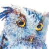 Аватар пользователя AVGS