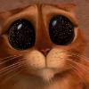 Аватар пользователя xWolf