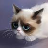 Аватар пользователя xGrumpyCatx
