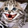 Аватар пользователя dayz24