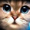 Аватар пользователя drizzt95