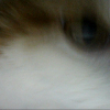 Аватар пользователя Oleksey93