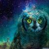 Аватар пользователя Kirumata