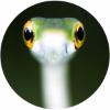 Аватар пользователя doob127