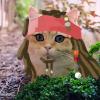 Аватар пользователя Darrius