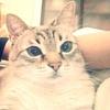 Аватар пользователя BadCake1