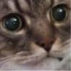 Аватар пользователя Doria