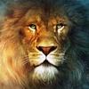 Аватар пользователя ToshaAlex