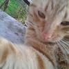 Аватар пользователя AppolinariaSanna