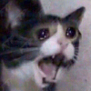Аватар пользователя slimedan