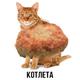 Аватар пользователя K0TLETA