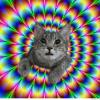 Аватар пользователя Duke89