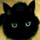 Аватар пользователя rkostyan