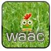 Аватар пользователя frwrt236526
