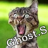 Аватар пользователя GhostS1313
