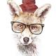 Аватар пользователя phox
