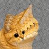 Аватар пользователя WarmanZ