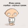 Аватар пользователя alim1cunashev