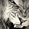 Аватар пользователя DjSwat