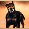 Аватар пользователя baskervil