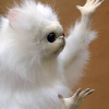 Аватар пользователя Kiselburg
