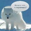 Аватар пользователя IrishaRussia