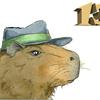 Аватар пользователя Kapibara13