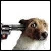 Аватар пользователя holeinthehead