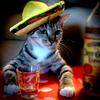 Аватар пользователя ByLynx