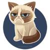 Аватар пользователя footdot