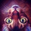 Аватар пользователя ulya18kiss